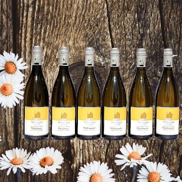 Weißwein-Paket Schlossgut Istein